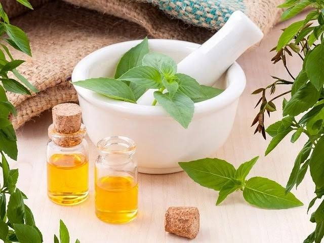 Why You Should Consider Using Herbal Medicines